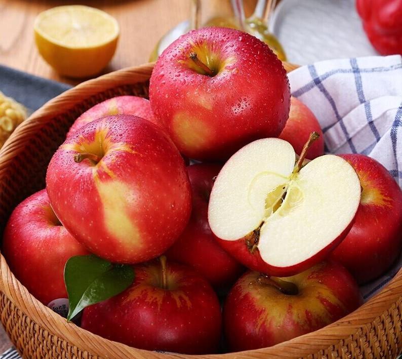 TÁC DỤNG CỦA QUẢ TÁO ĐỎ LÀ GÌ? | FUJI FRUIT | Hệ thống hoa quả sạch nhập  khẩu Fuji