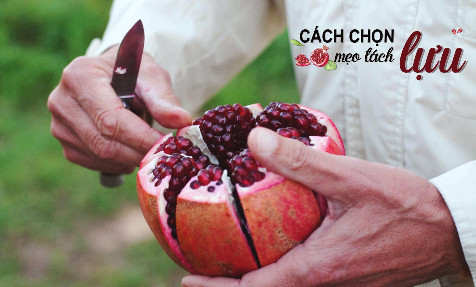 Cách chọn mua quả lựu ngon chuẩn từng quả   Fuji Fruit   Hệ thống hoa quả  sạch nhập khẩu Fuji