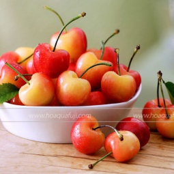 Cherry Vàng