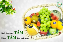 Chất lượng từ TÂM-Xứng TẦM hoa quả sạch