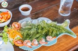Rong nho Okinawa: Món quà dinh dưỡng mà đại dương mang lại