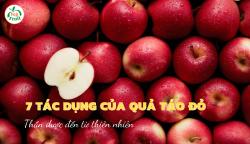 7 Tác dụng của quả táo đỏ - Thần dược đến từ thiên nhiên